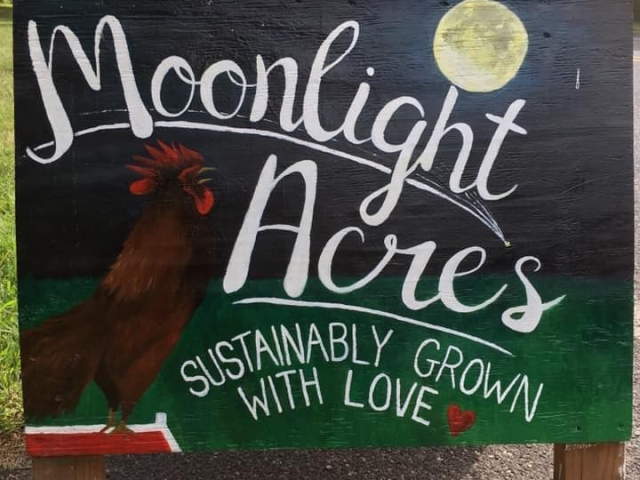 farmers market a-frame sign with moon and rooster