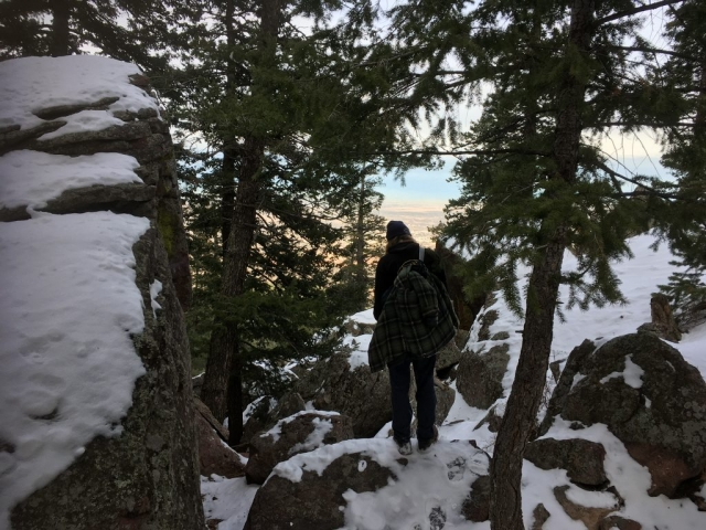 Man between trees with snow on ground