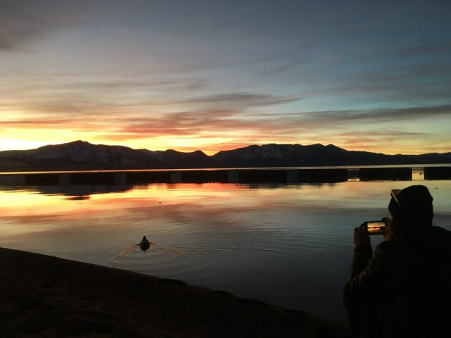 Colorful sunset over Lake Tahoe With duck in water