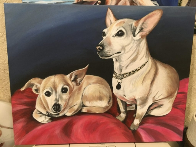 two chihuahua pet portrait