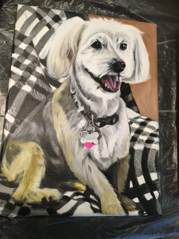 dog pet portrait, pet painting