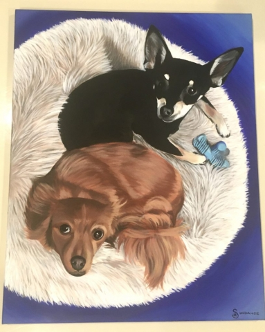 two dog pet portrait