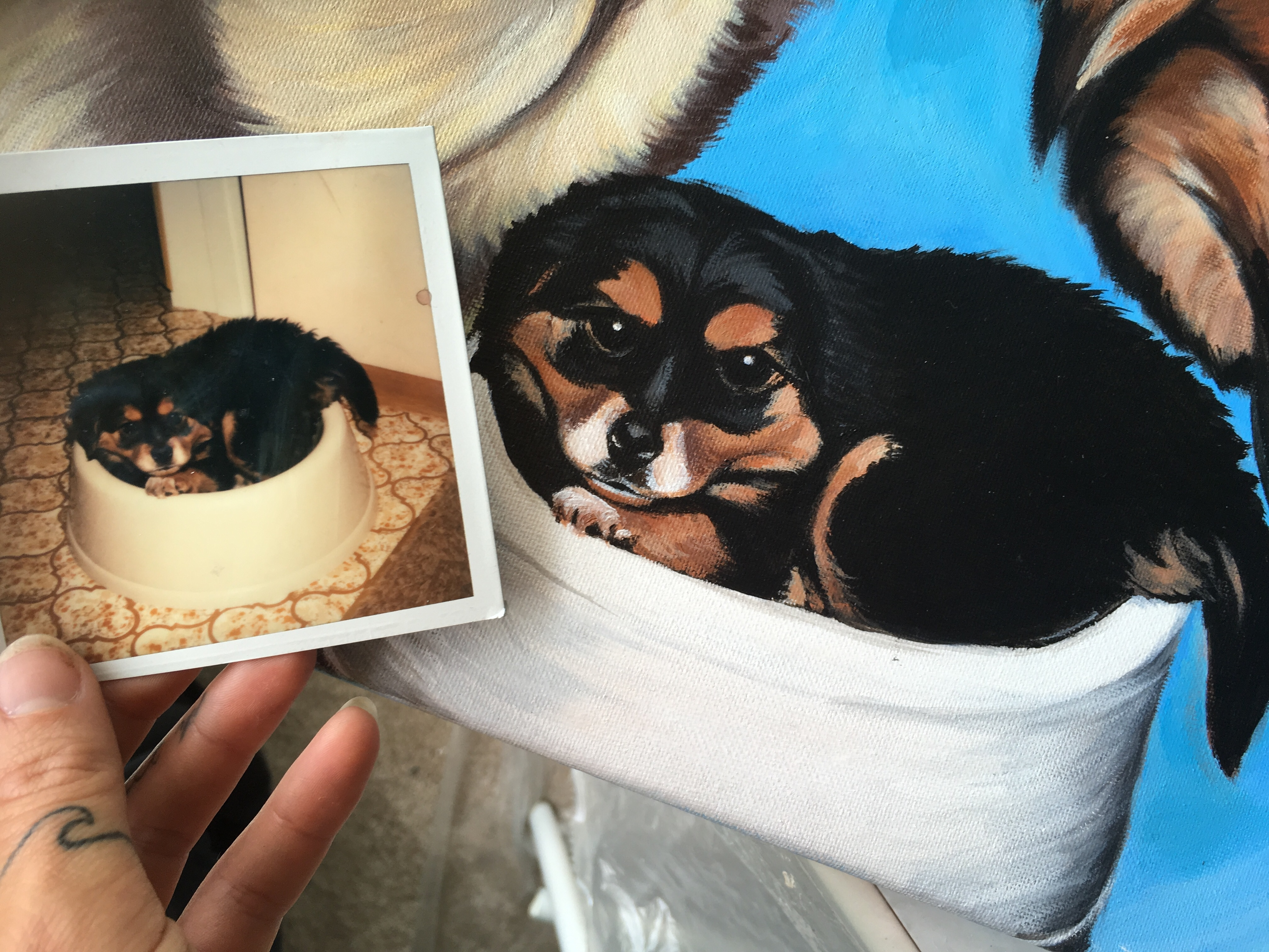 dog on painting and in polaroid