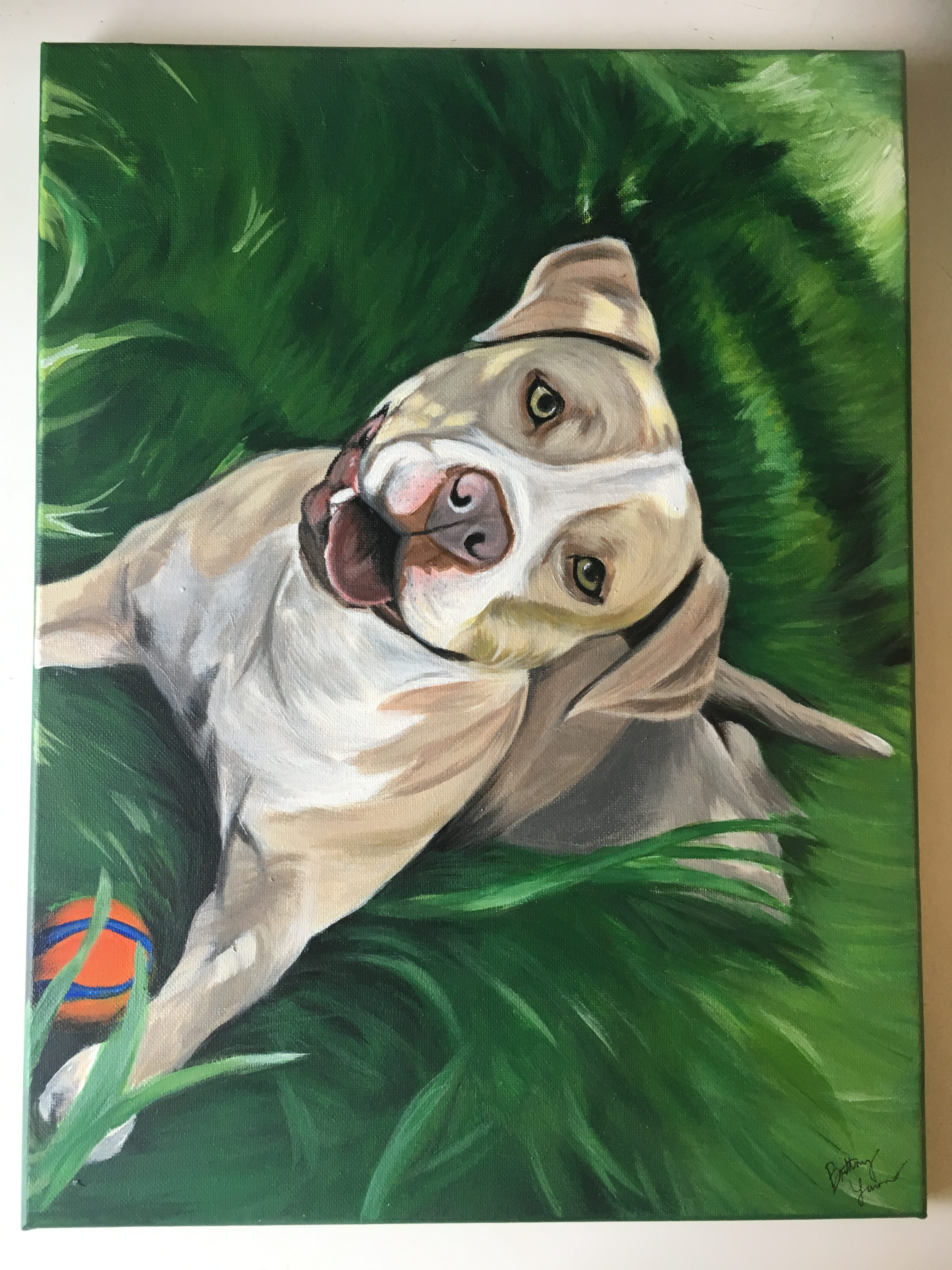 pit bull dog painting