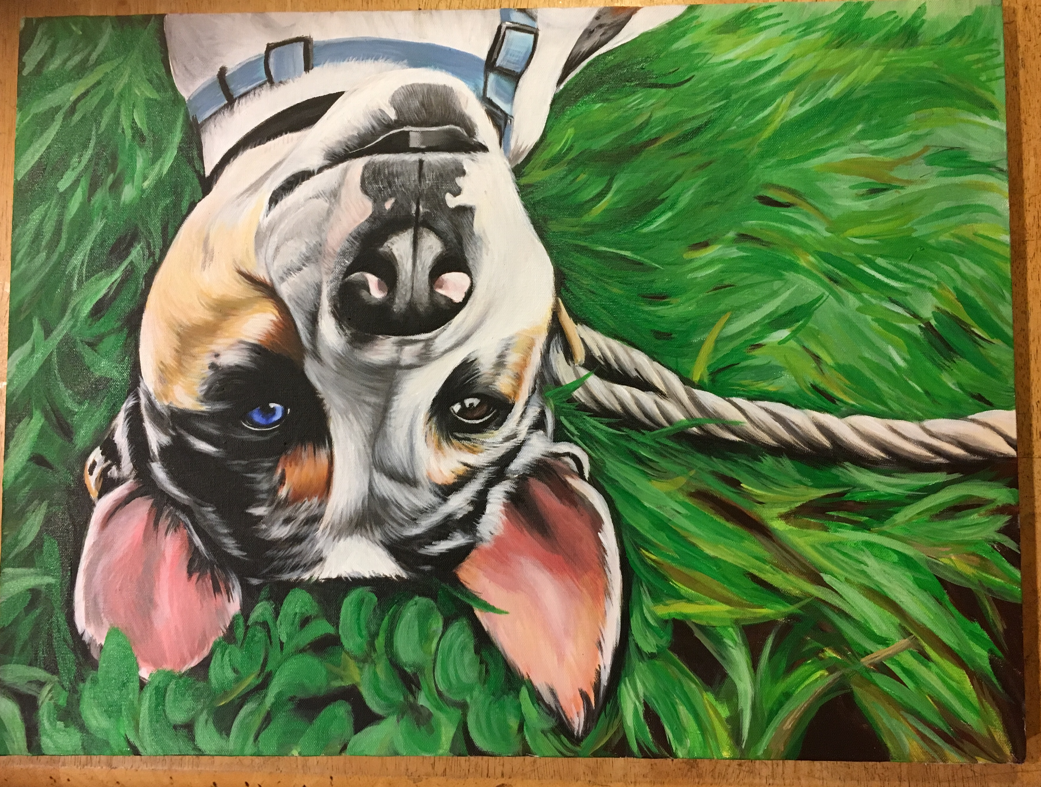 dog painting, pet painting, pet portrait