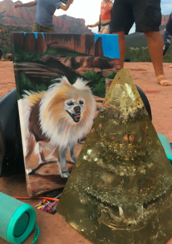 pet portrait with orgonite