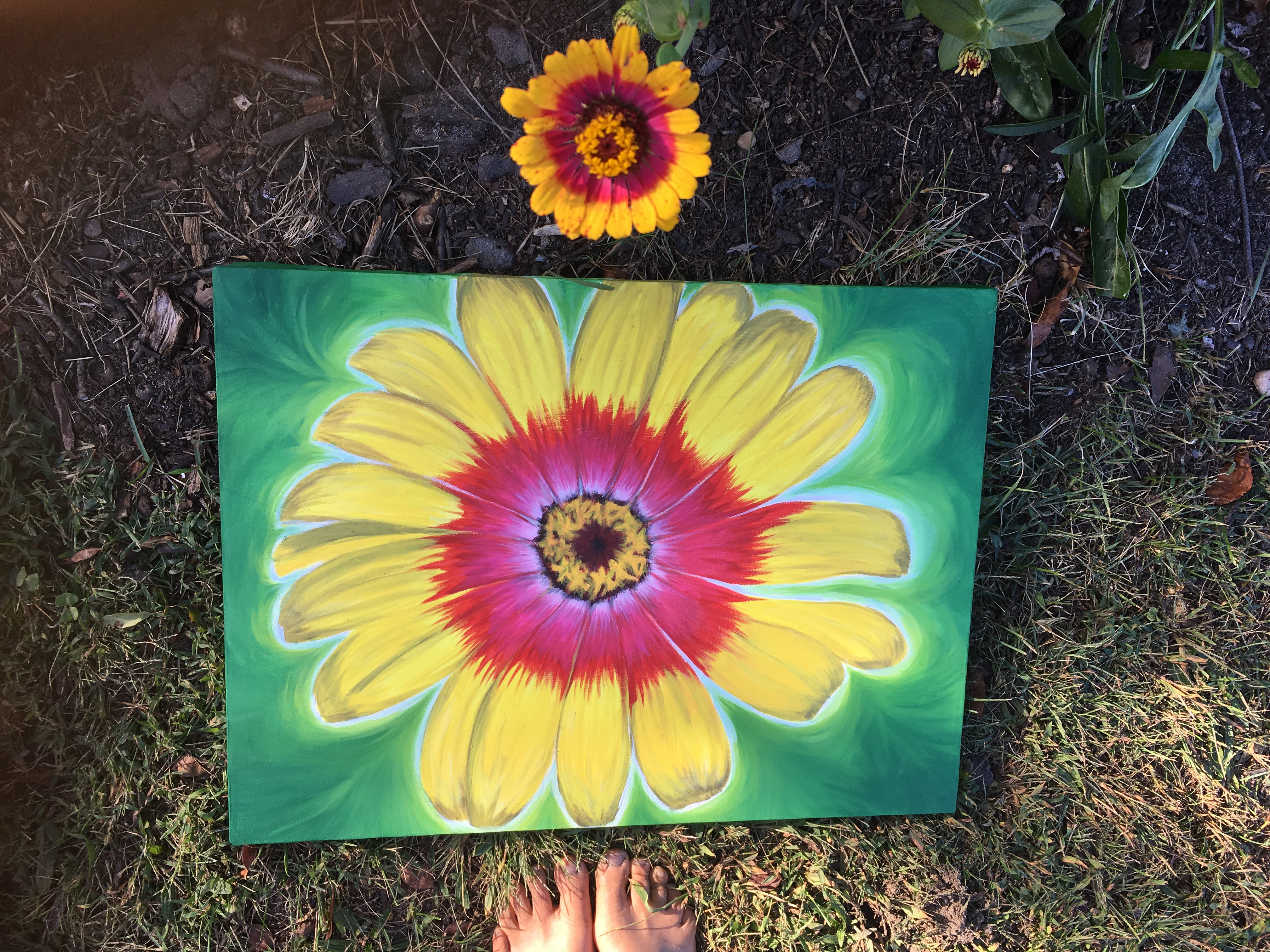 bright colorful zinnia painting