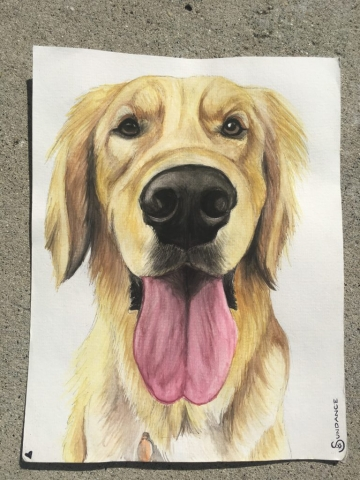 golden retriever watercolor pet portrait