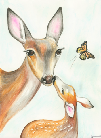 deer, medicine, fawn, foe, butterfly, watercolor, mom and baby, baby shower, gift, gentleness